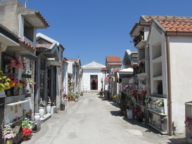 graz-il-viale-centrale-risparmiato-del-vecchio-cimitero-di-grazzanise